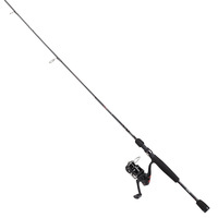 Mitchell Avocet RZ Spinning Combo