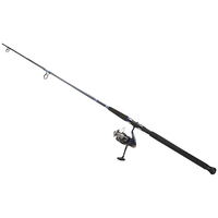 Daiwa D-Wave Reel and Graphite Rod Combo