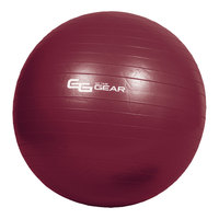Go Time Gear Deluxe Exercise Ball